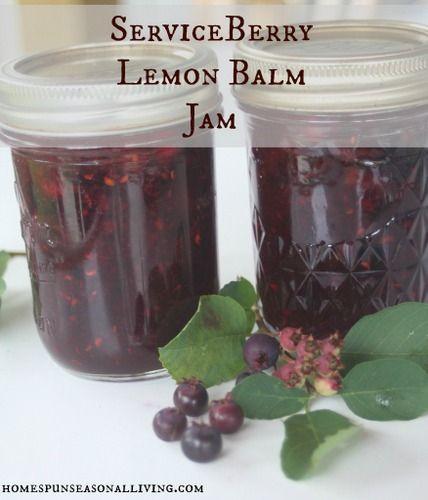 Serviceberry Lemon Balm Jam - Homespun Seasonal Living