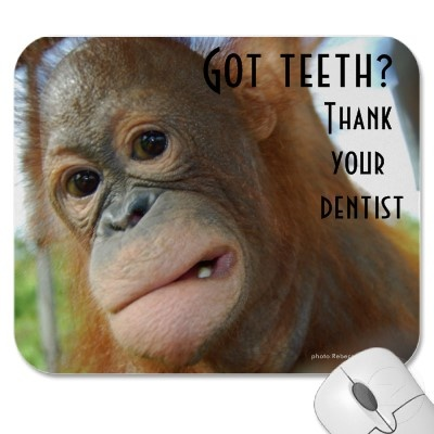 20 curated Dental Humor ideas by brigliadental | Dental ...