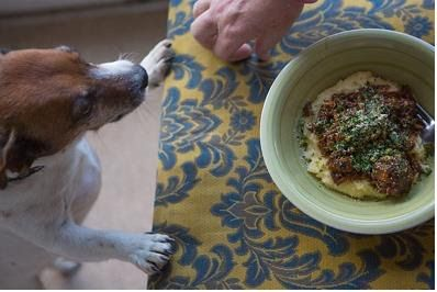 WONDERBAG OSSO BUCO WITH LOCAL VENISON / Family, Food & Company