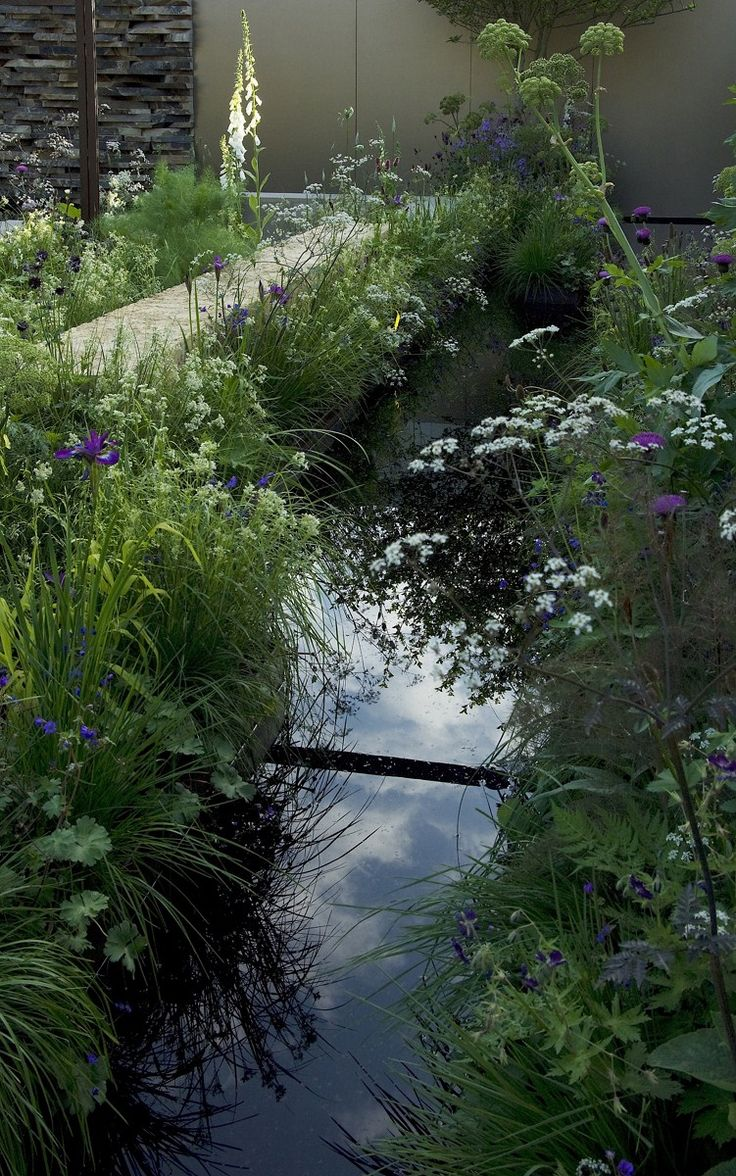 Hesperis, Gillenia and Euphorbia palustris created a sensuous foil to the dramatic, emergent forms of Angelica archangelica, and Cirsium heterophyllum.