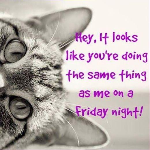 Funny Quotes About Friday: 1000+ Quotes About Friday On Pinterest