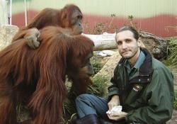 Sierra College to Host World Renowned Orangutan Experts as They Present in Auburn, CA for 'HangOut for Orangutans'