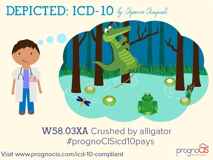 ICD-10 Humor: Crushed by alligator