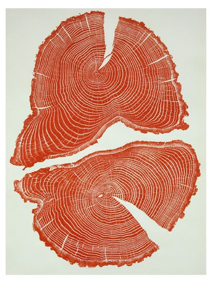 Tree cross sections make beautiful prints: http://j.mp/YkRJZh