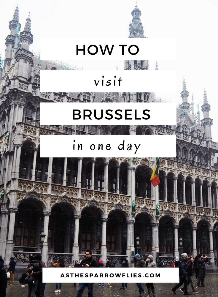 Brussels   European Travel   Brussels Day Trip   Travel Tips