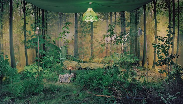 Nature always wins in the end: Lina Jaros