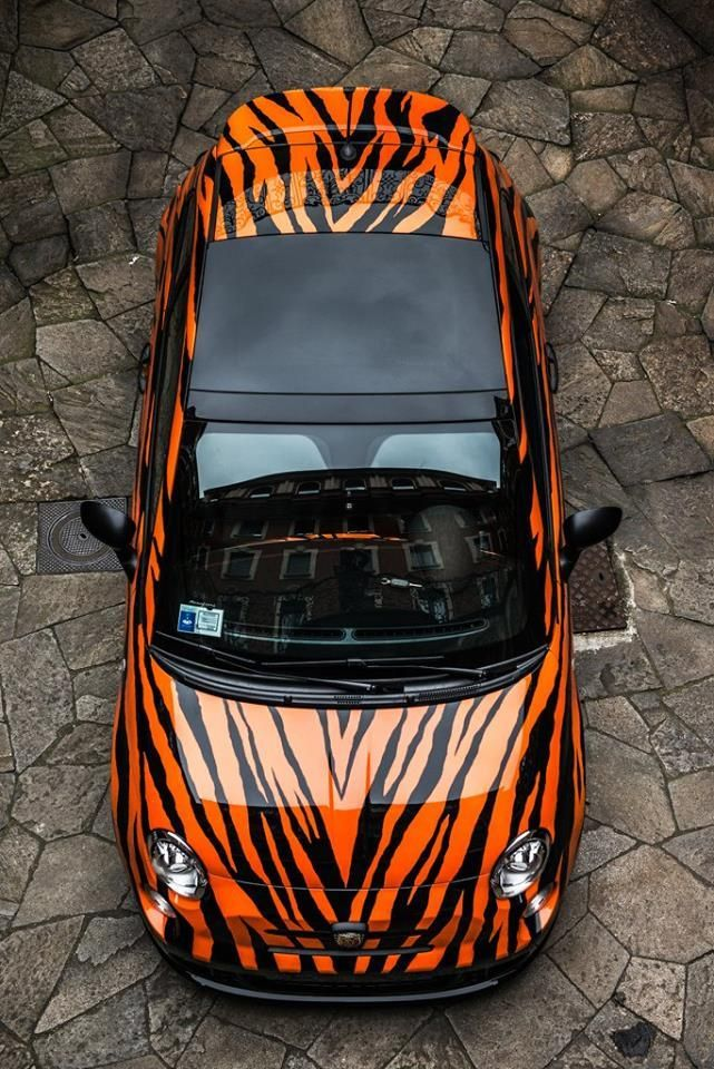Best WD Car Graphics Images On Pinterest Car Wrap Car And - Best automobile graphics and patterns