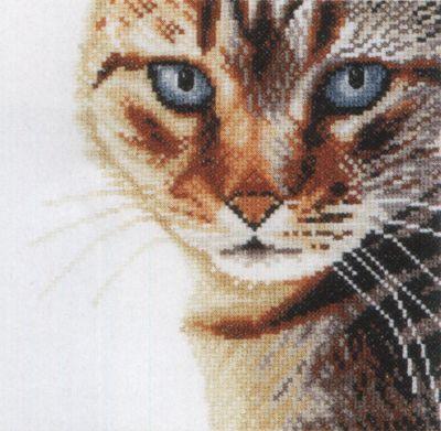 Cat Cross Stitch Kit By Lanarte