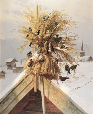 The Scandinavian tradition of putting out a sheaf for the wild birds at Yule/Christmas goes long back in time. Originally the sheaf was a fertility sacrifice to the old Gods. Therefore the sheaf was to be the last to be made after the harvest, and by the best crop. During Medieval times the church made efforts to forbid people to put out sheafs, because it was considered a pagan tradition.