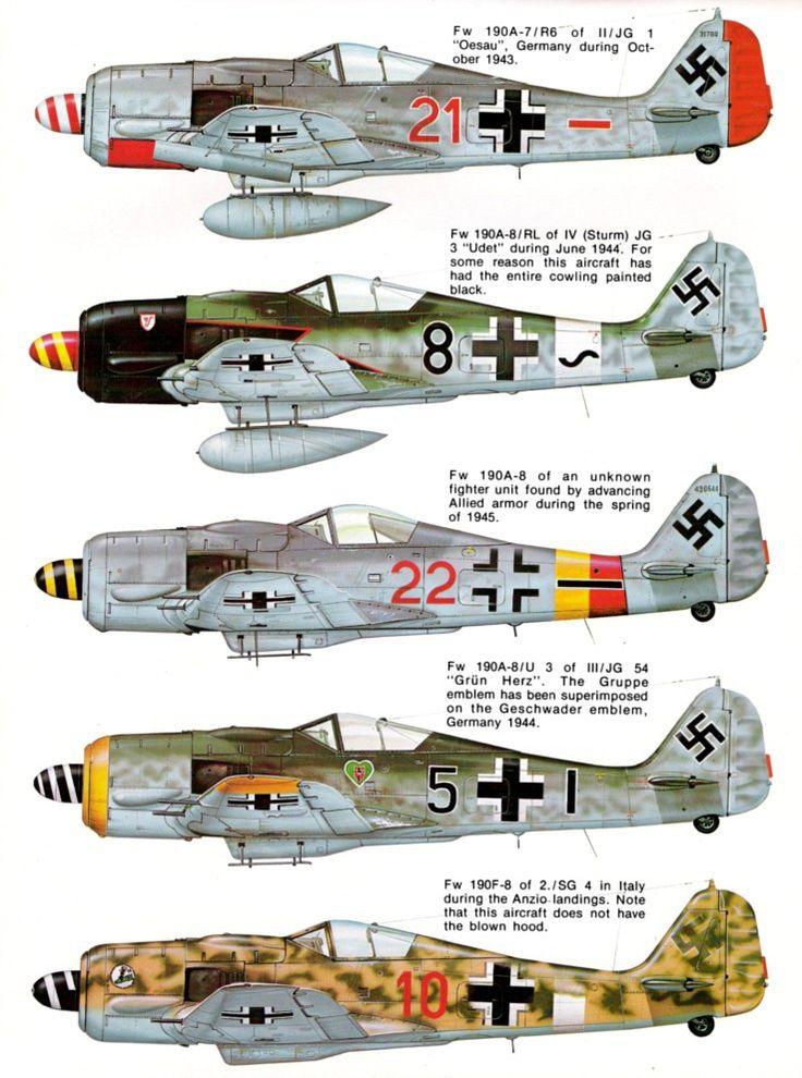 Squadron Signal N° 19 - Focke Wulf FW 190