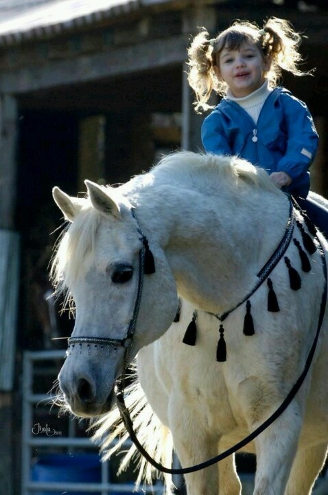What a great picture. Beautiful horse, gorgeous little girl !!