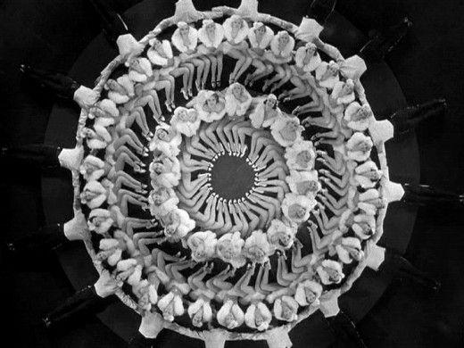 geometrical arrangement of dancers by Busby Berkeley
