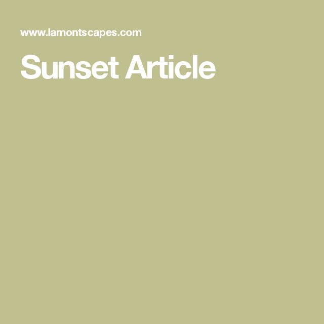 Sunset Article
