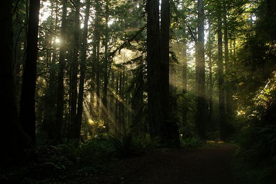 1000 Images About Humboldt County California On