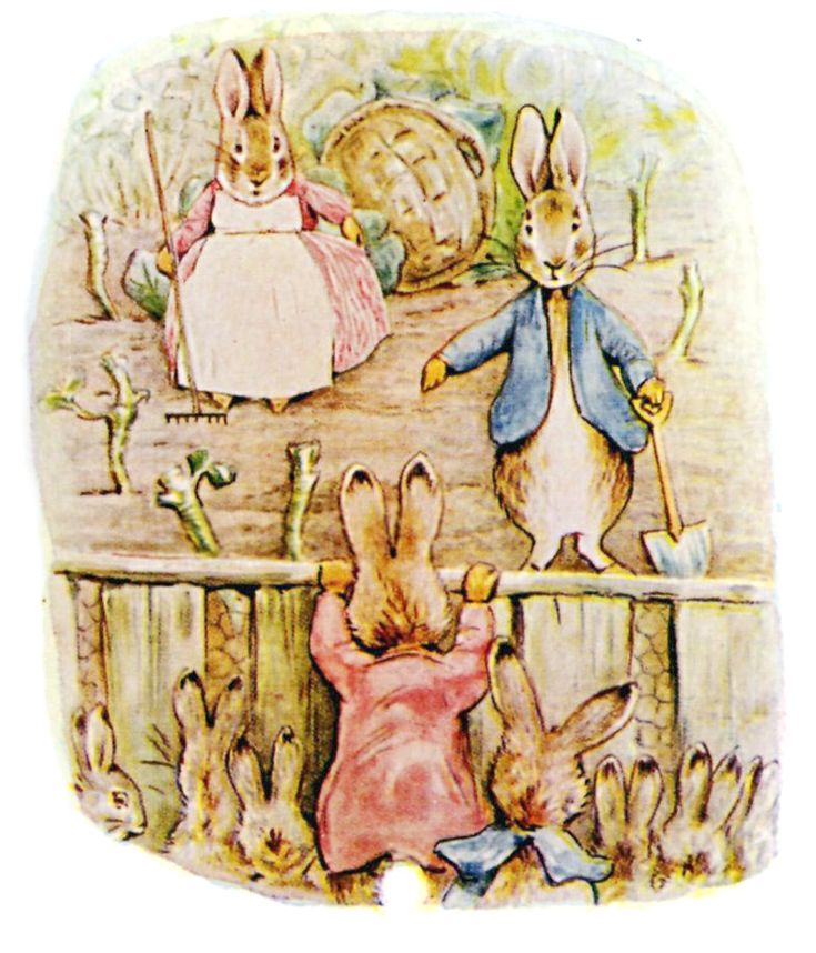 Grown up Peter in his nursery garden, from The Tale of The Flopsy Bunnies
