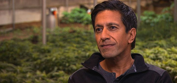 Dr. Sanjay Gupta Talks Marijuana Use, Vaporizers vs. Edibles, and More