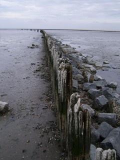 Werelderfgoed de Waddenzee
