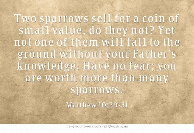 Mathew 10:29-31