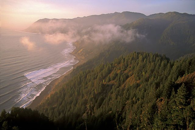 Image result for lost coast surfing map