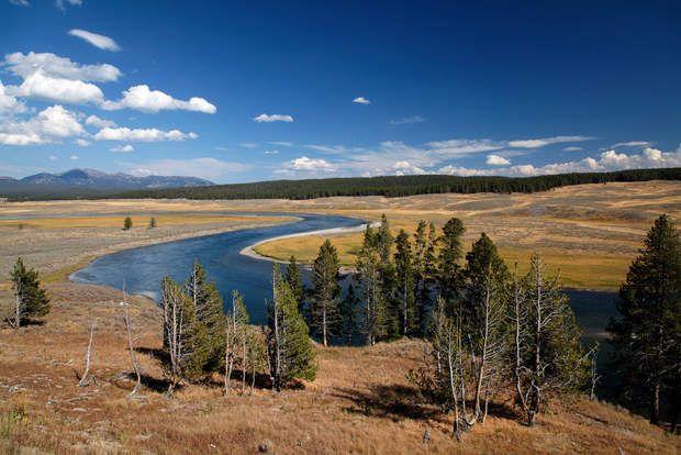 Le parc national de YellowstoneSitué dans le Wyoming, le parc de Yellowstone est le plus ancien parc national du monde. Il est célèbre pour ses nombreuxgeyserset sessources chaudes.