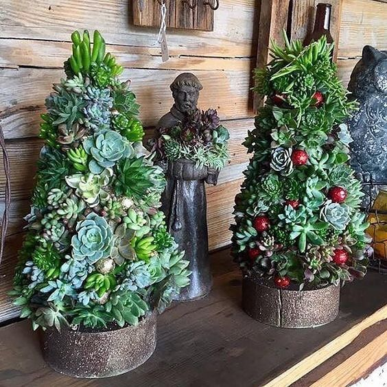Sick of #SucculentChristmasTrees yet? Us neither (Photo: succulentcity)
