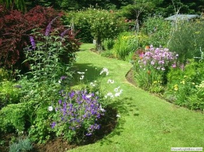 12 best images about tuinidee n on pinterest gardens for Cottage garden designs
