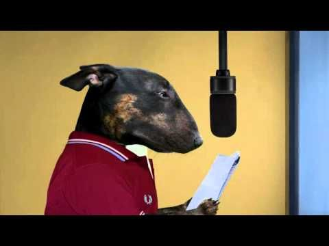 Dog Judo Starring Simon Day - Cheese - YouTube