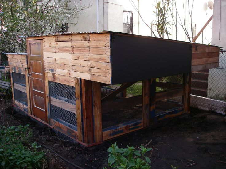 Recycled pallet chicken coop garden pinterest for Pallet chicken coup