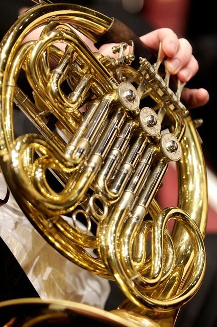 French Horn - rich, gloriously triumphant brass instrument.