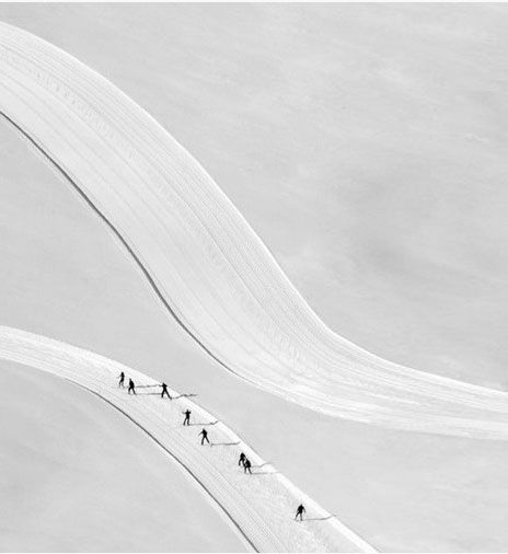Nordic Ski.
