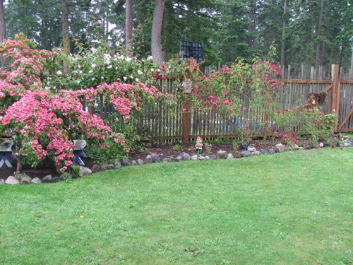 17 best images about ideas to make a rose garden on for Rose garden design