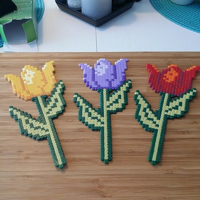 Tulip flowers hama beads by kerthan72
