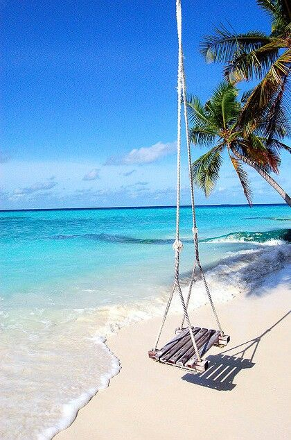 White sand beaches, clear blue waters, and a super awesime tree swing that swings out over the ocean waves ..... Beautiful Tropical Paradise