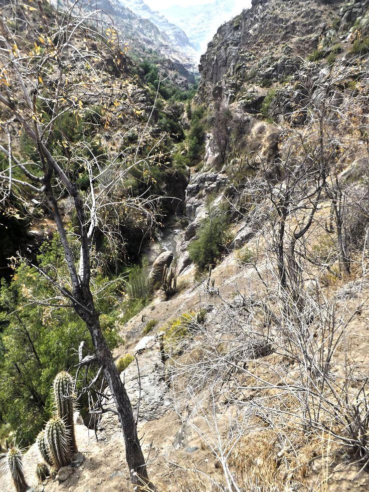 Quebrada en el Cajón del Maipo, cordillera de los Andes.