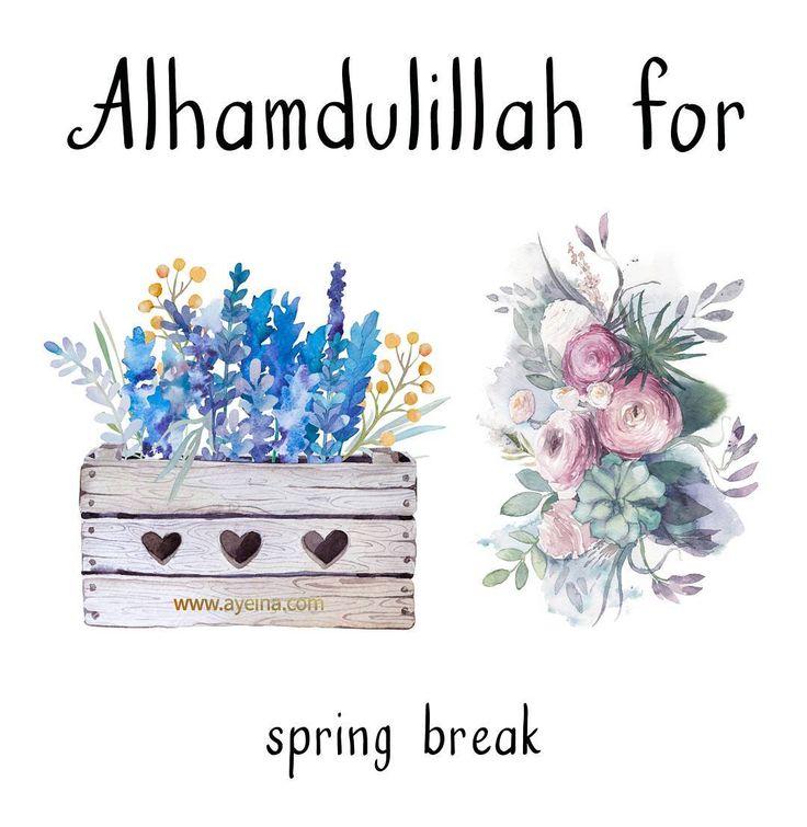 71. Alhamdulillah for spring break.  #AlhamdulillahForSeries