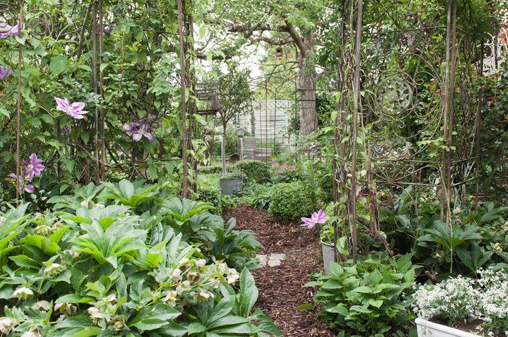Garten ohne rasen ideen zur gestaltung eines for Gestaltung eines gartens
