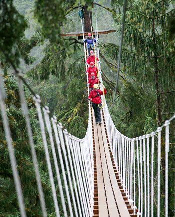 The world's most wobbly bridge. Canopy bridge, Ketchikan, Alaska