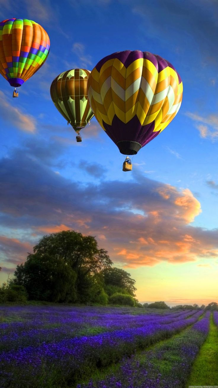 Rainbow Colored Air Balloons iPhone 6 Plus