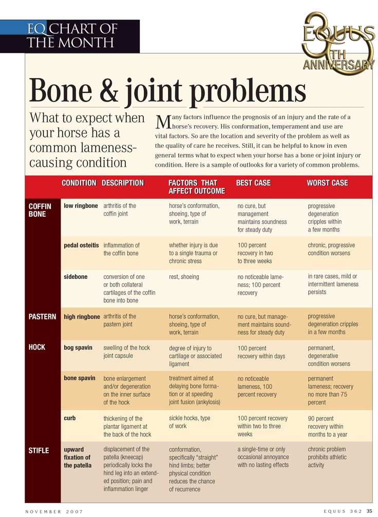 What to expect when your horse has a common lameness-causing condition in his bones and joints.