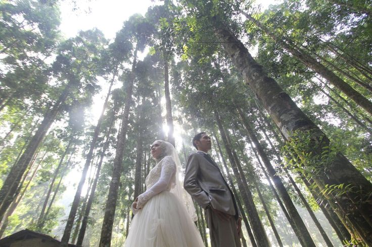 #wedding #preweddingrustic #alam  #photosoot #ideprewedding