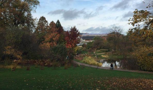 Copenhagen Botanical Garden by @gorgeousssleep / 5 Fun & Free Things to do in Copenhagen