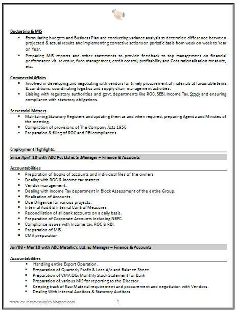 good professional cv examples