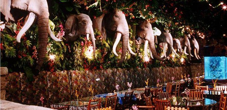 Rainforest Café | Las Vegas Restaurant | Las Vegas Hotel Deals