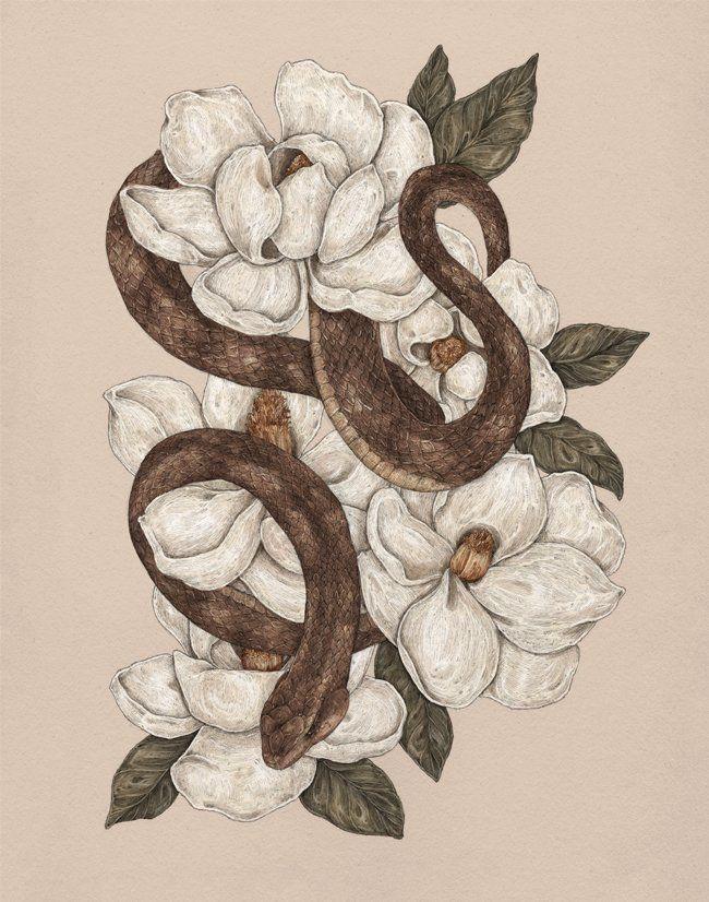 картинки змей карандашом в цветах теперь выбирайте
