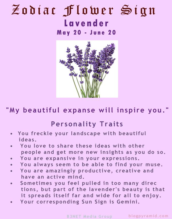 Divine Spark:  #Zodiac Flower Sign ~ Lavender May 20 - June 20 (#Gemini).