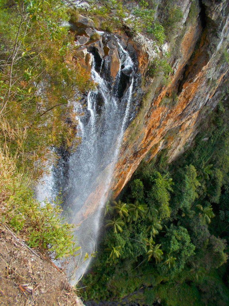 Purling Brook Falls- Spingbrook National Park