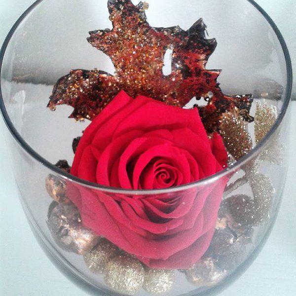 rose naturelle stabilis e ternelle plusieurs couleurs pr te offrir cadeau exceptionnel. Black Bedroom Furniture Sets. Home Design Ideas