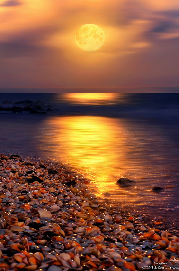 Full moon rising over Ocean Reef Park on Singer Island Florida