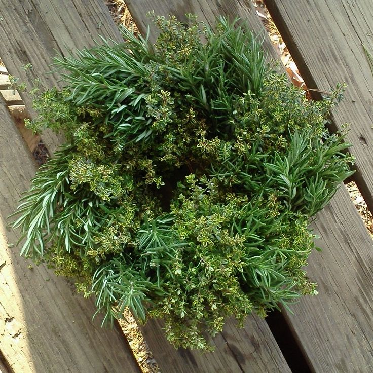 handmade rosemary & lemon thyme herb wreath - www.stokesfarm.com