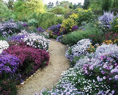 Love the cool purples, blues and green lining this garden path